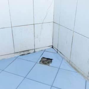 Schwarzschimmel im Badezimmer